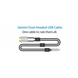 iFi Gemini Dual-Headed USB Cable 2.0
